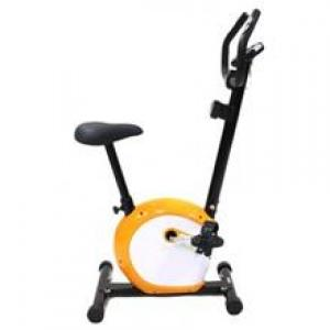 دوچرخه ثابت پاندا B 541 panda magnetic bike B541    Panda Bicycle B541